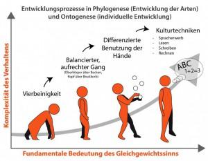 Hypnosetherapie Phylogenese Ontogenese