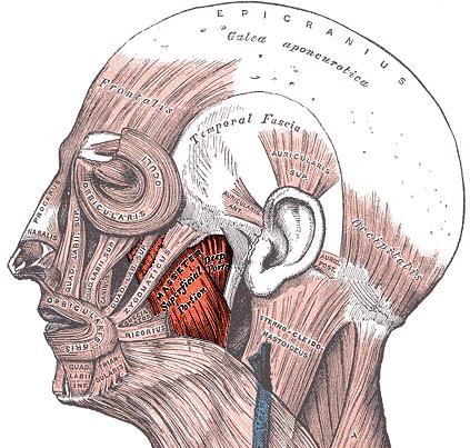 Hypnosetherapie München - Kieferbeschwerden mit Hypnose behandeln