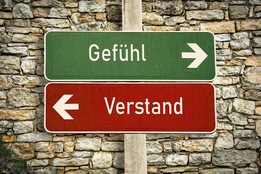 Hypnose Intuition Entscheidungen